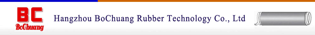 Hangzhou BoChuang Rubber Technology Co., Ltd
